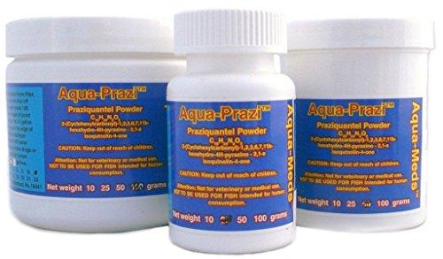 Aqua prazi koi care pond treatment fluke parasite 100 for Koi pond treatment