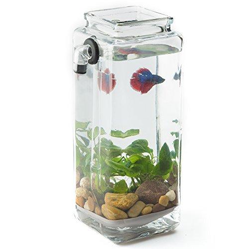 [Newest Version] NoClean Aquariums GravityFlow Self-Cleaning Glass Betta Fish Aquarium – The ...